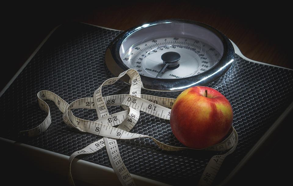 Le necessità dell'organismo nutrizionista macerata